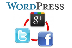 WordPress Social Login Logo